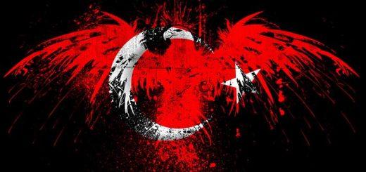 kartal-resimli-turk-bayraklari