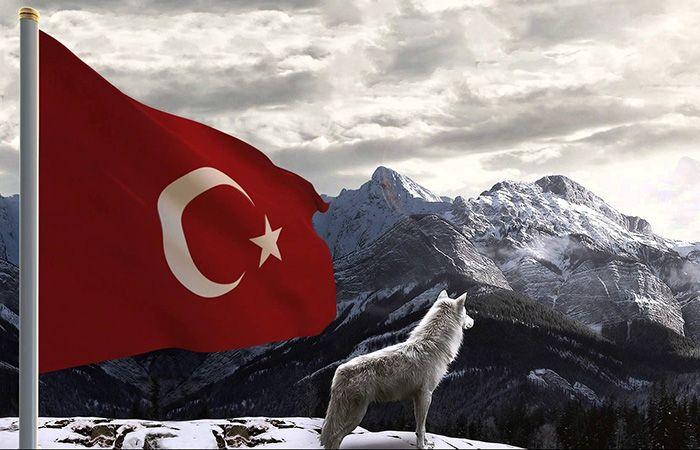 kurt-resimli-turk-bayraklari